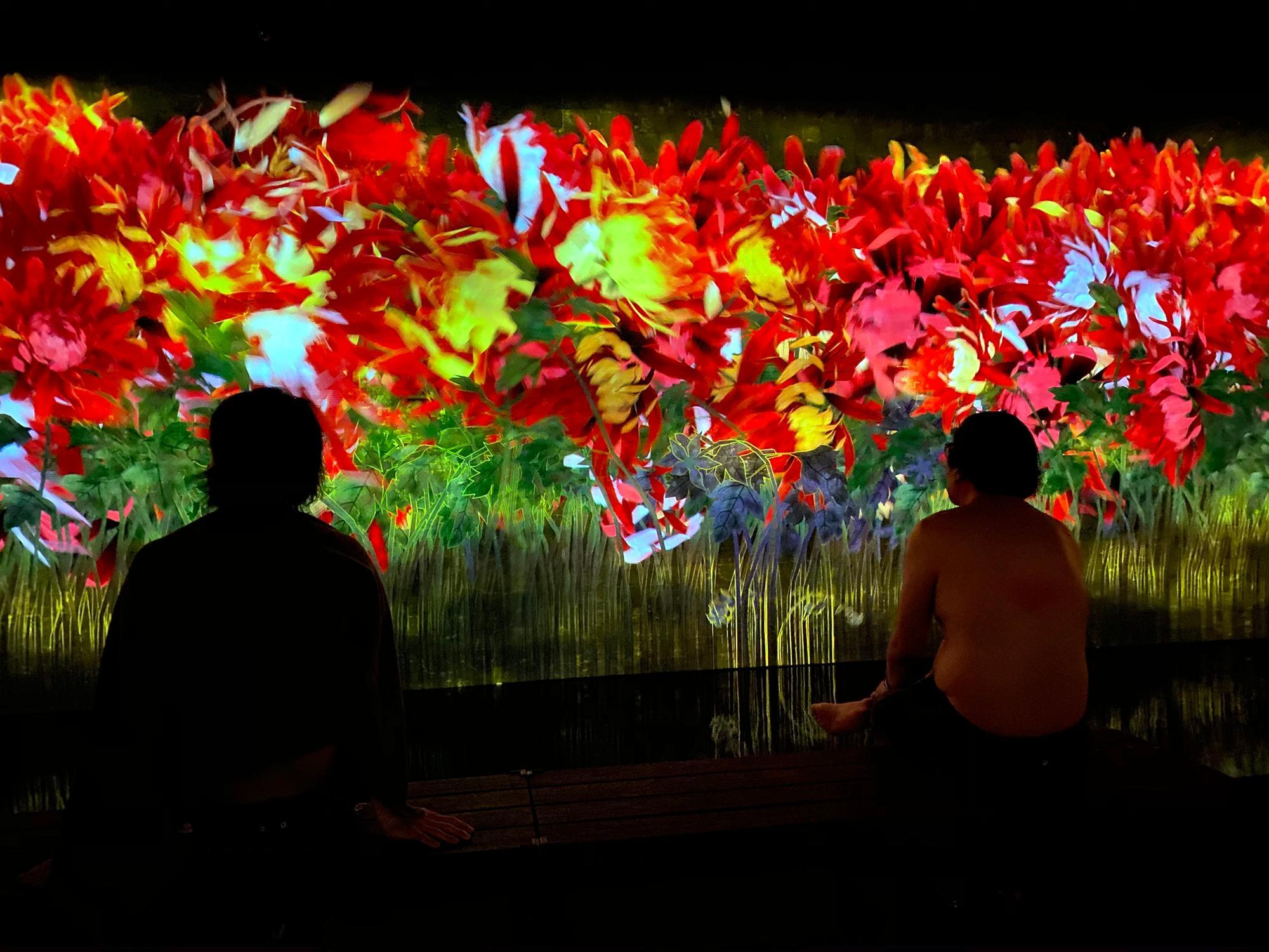「降り注ぐ雨の中で増殖する無量の生命」/会場に用意された椅子に座って目の前にある大きな画面。コンピュータープログラムによってリアルタイムで描かれ続ける花々の様子を眺めることができる
