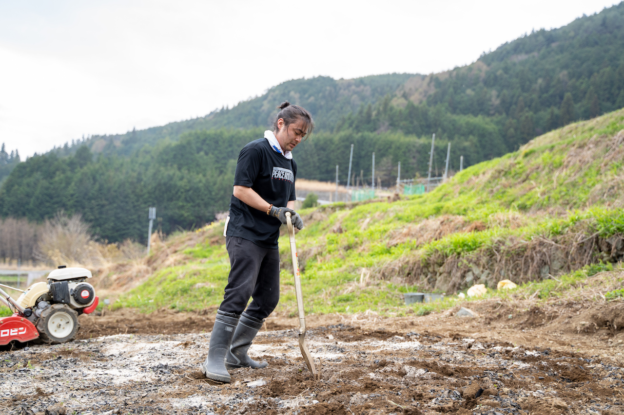 小雨の中、ショベルを使い土の中に竹炭を混ぜる