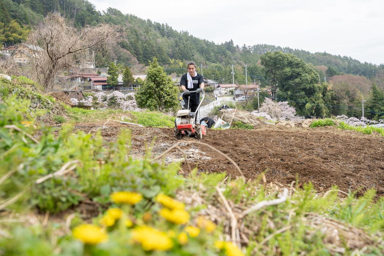 山梨県富士川町にある畑の周りには桜やタンポポ、土筆、水蓮の花などが咲いていた