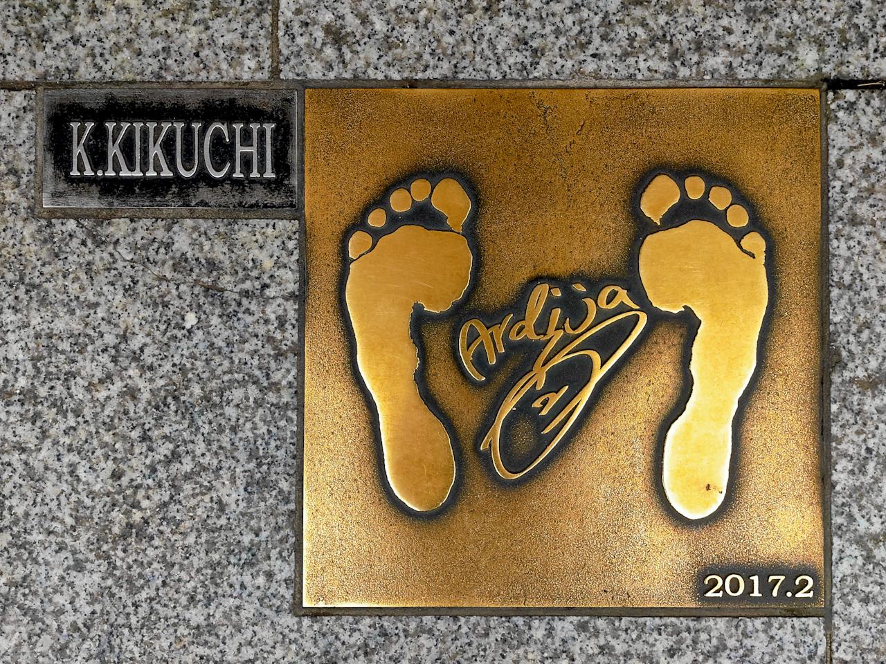 平成28年度に設置された菊地光将選手(現・レノファ山口FC所属)のレリーフ