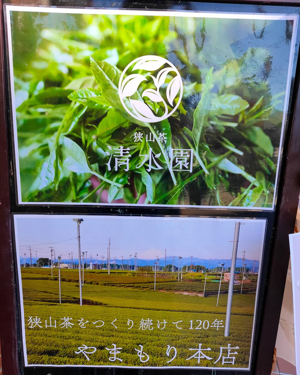 埼玉のお茶・狭山茶農家の「清水園」さんと「やまもり本店」さんの茶葉を使用した緑茶ラテや緑茶プリンを提供