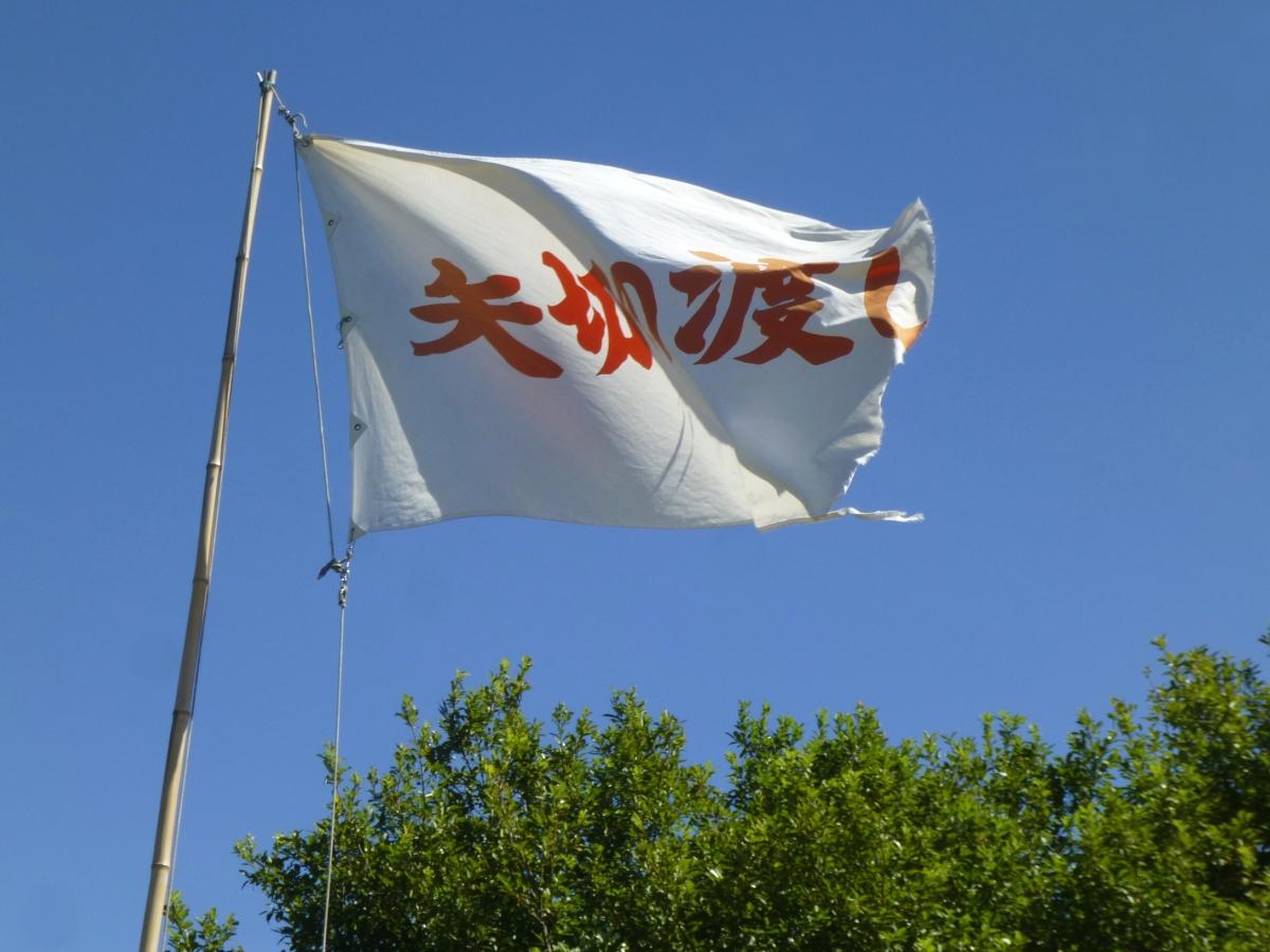風に翻る「矢切の渡し」の白い旗