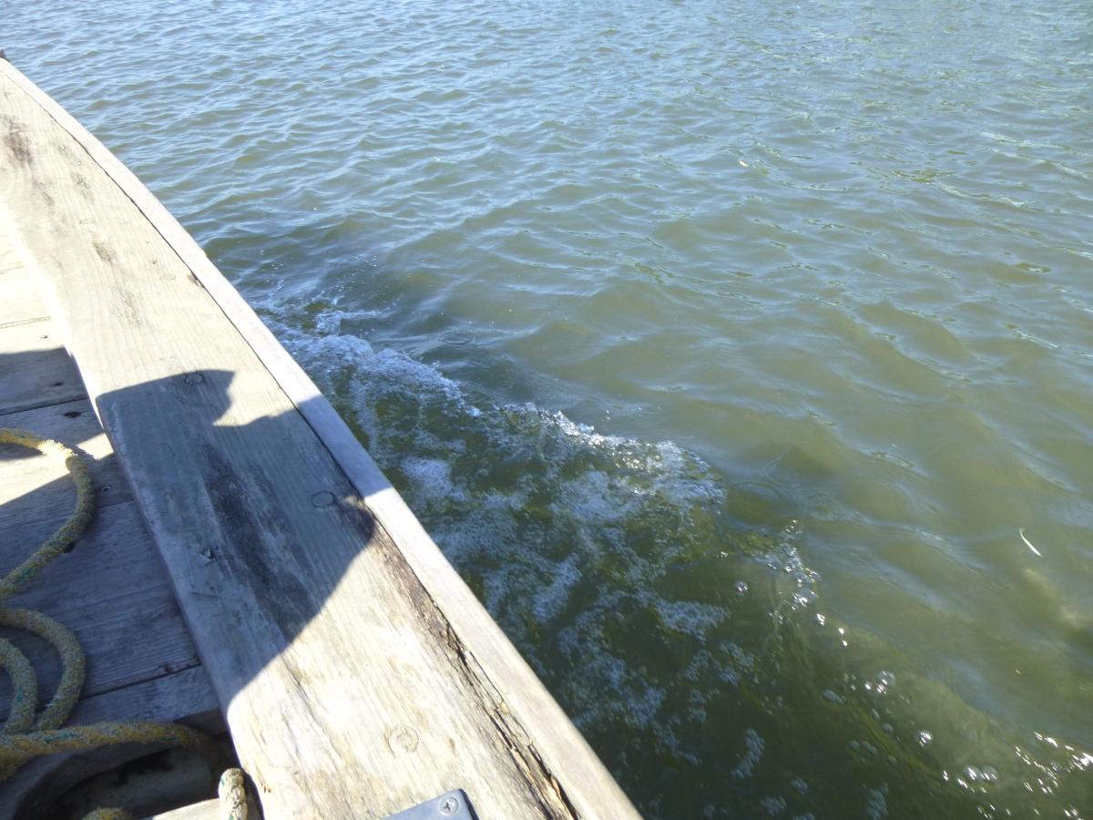 水面が近い!身を乗り出してはいけません。