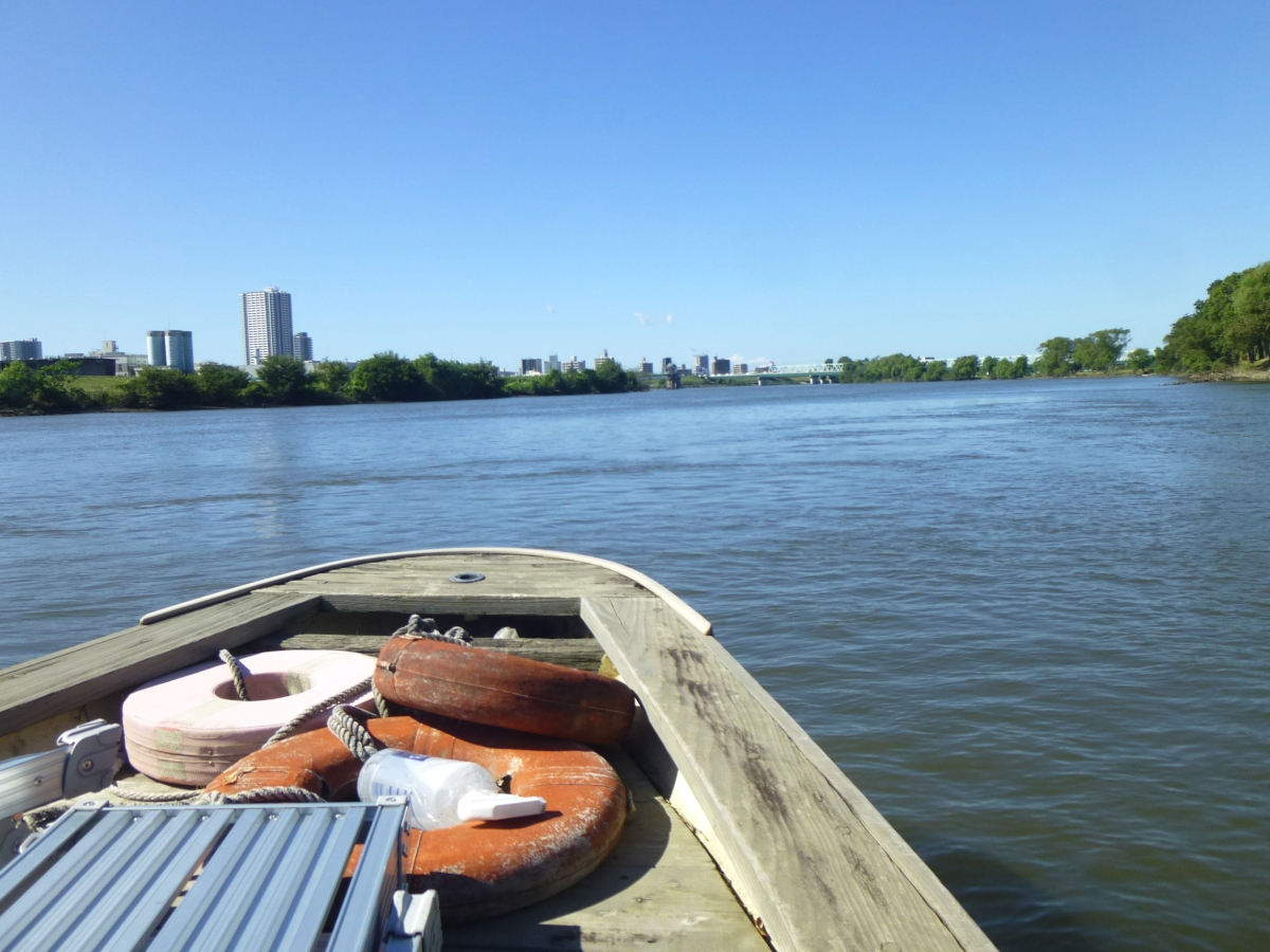静かに進む船の舳先。空と川の広さを満喫できます。