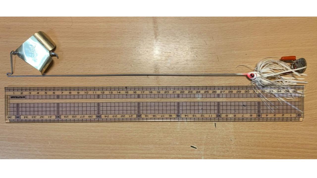 ブーヤーダンシングバズは全長36cm 画像提供:チョコボーイ松本さんより