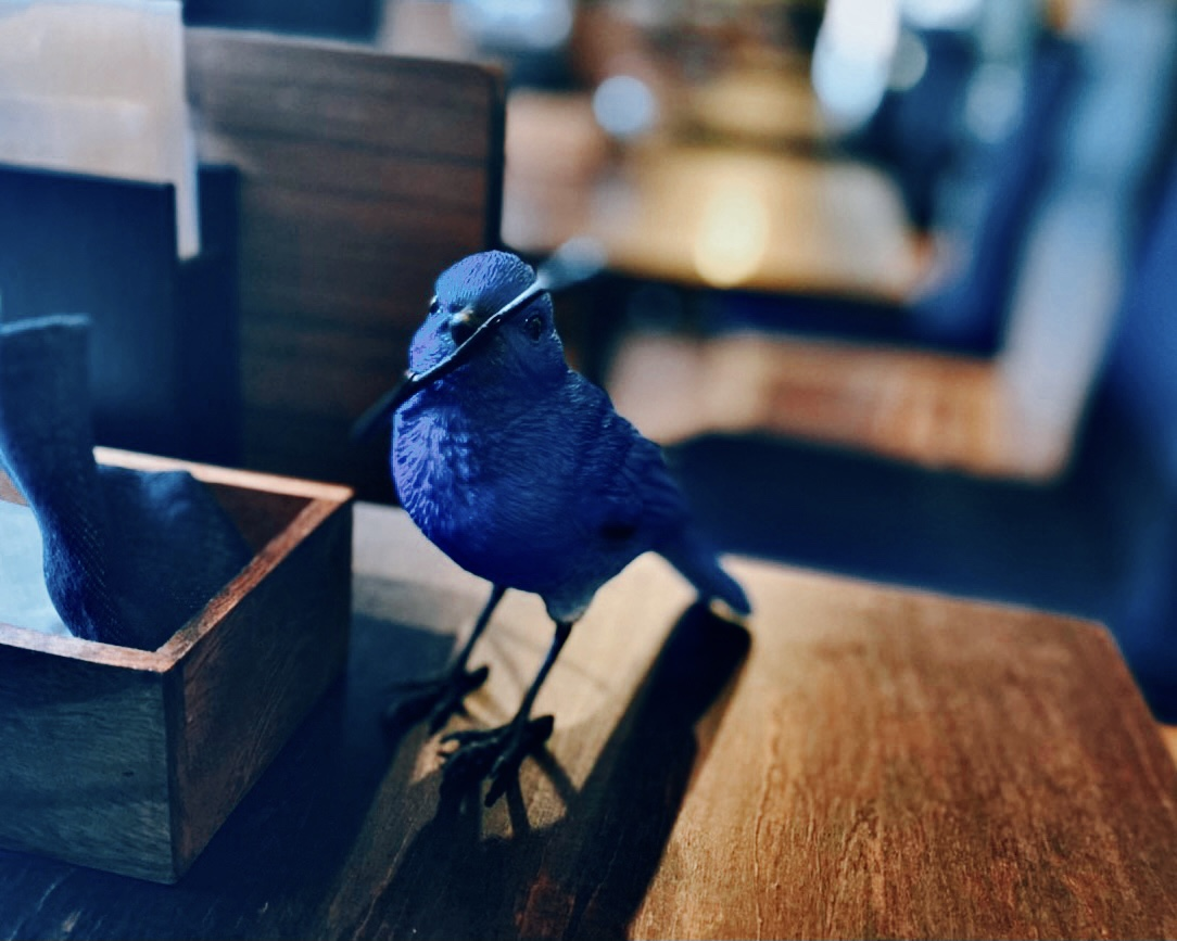 席には幸せの青い鳥が♪
