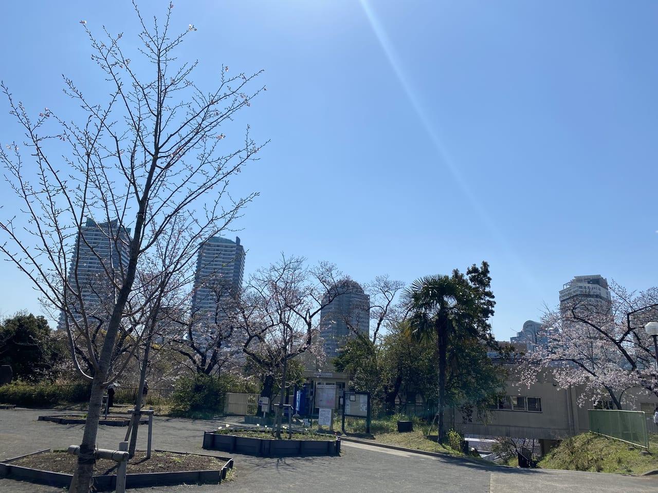 2021年3月23日撮影の幸ヶ谷公園