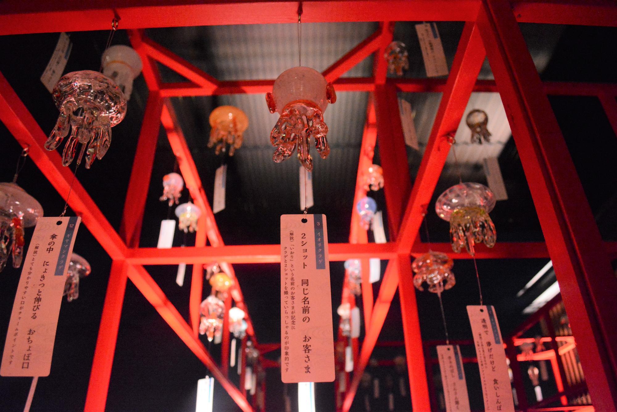 夜もまた幻想的 (写真提供:京都水族館)