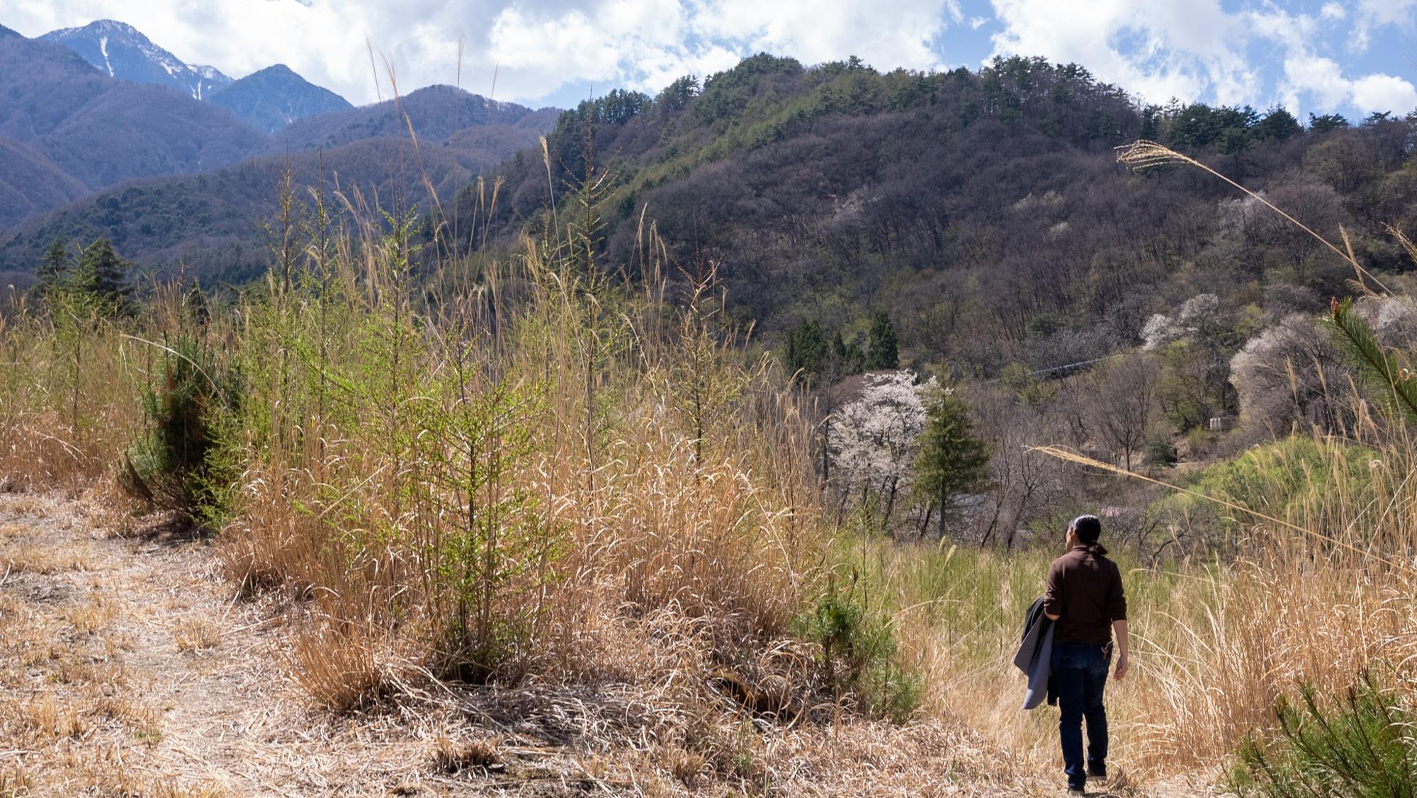 キャンプ場予定地から見える山々