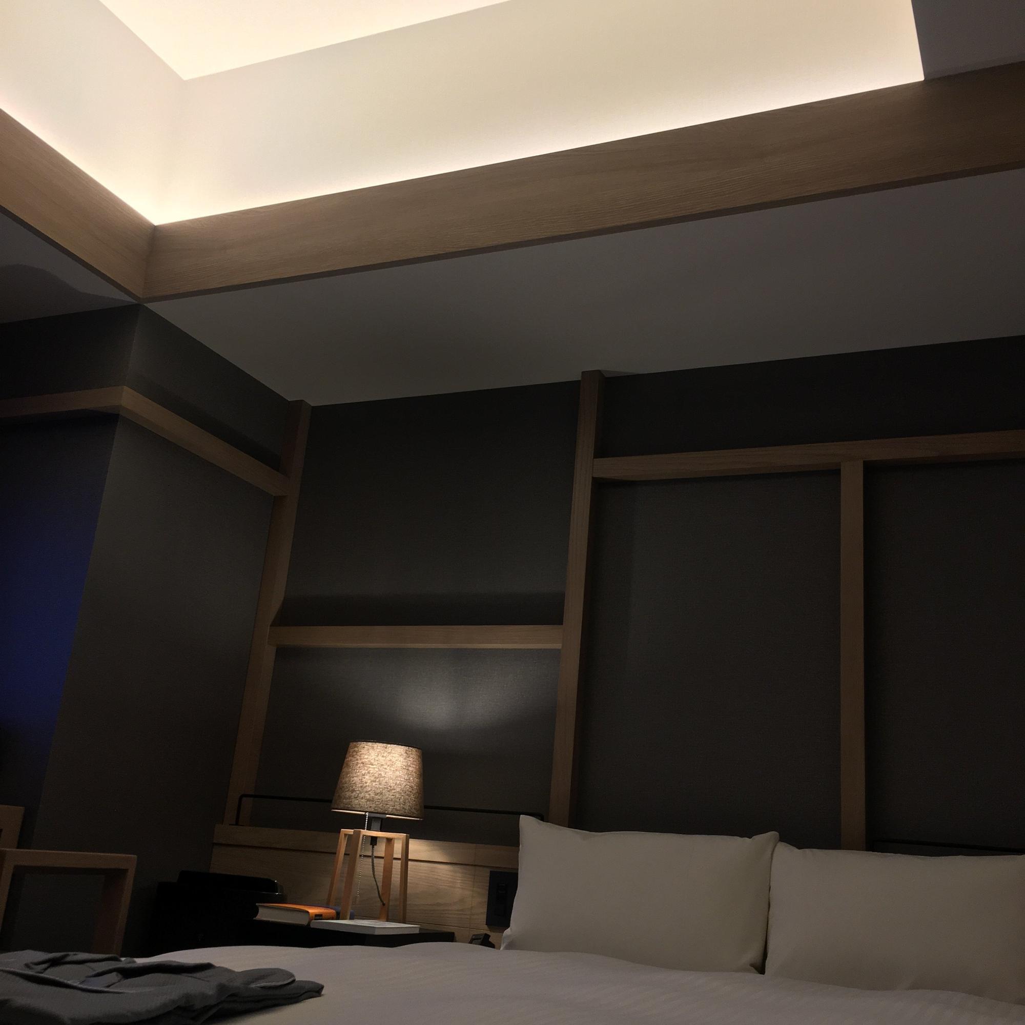 この天井の明かりが、夜遅くまで読書していても目が辛くなくて、とてもよかったです