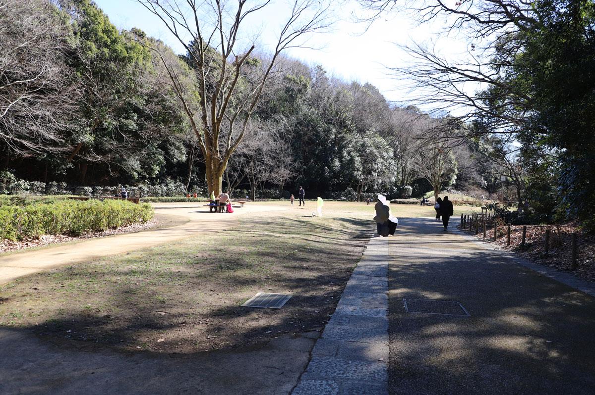 広い散歩道が続いています