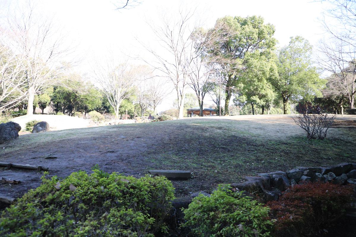 凹凸のある芝生広場は楽しいですが、ボール遊びには注意