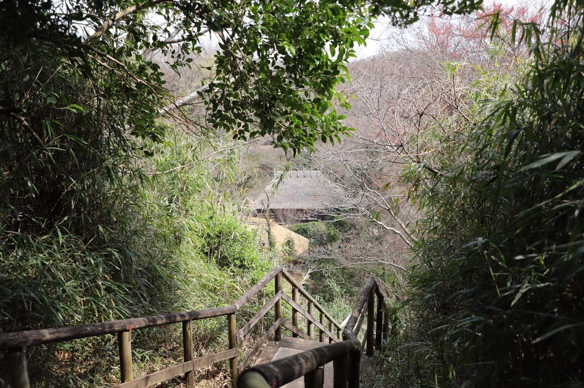 階段の上から望む古民家