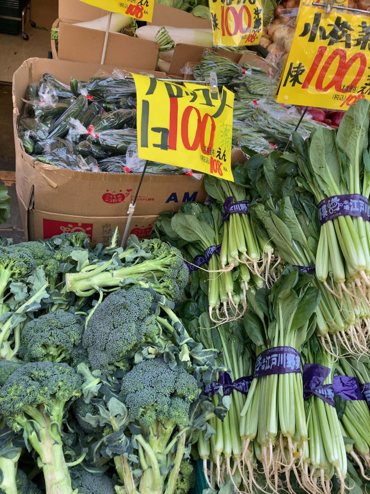 ブロッコリー、小松菜などみんな100円(税抜)で売っていました