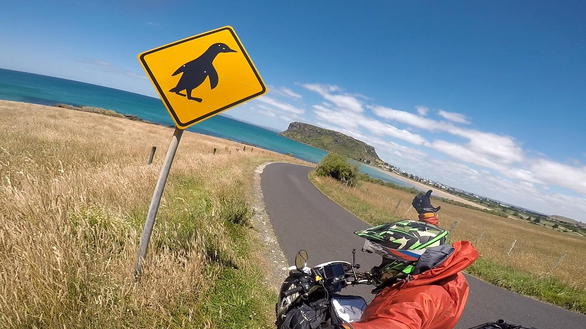 オーストラリアの南の方にはペンギンに注意の看板がある