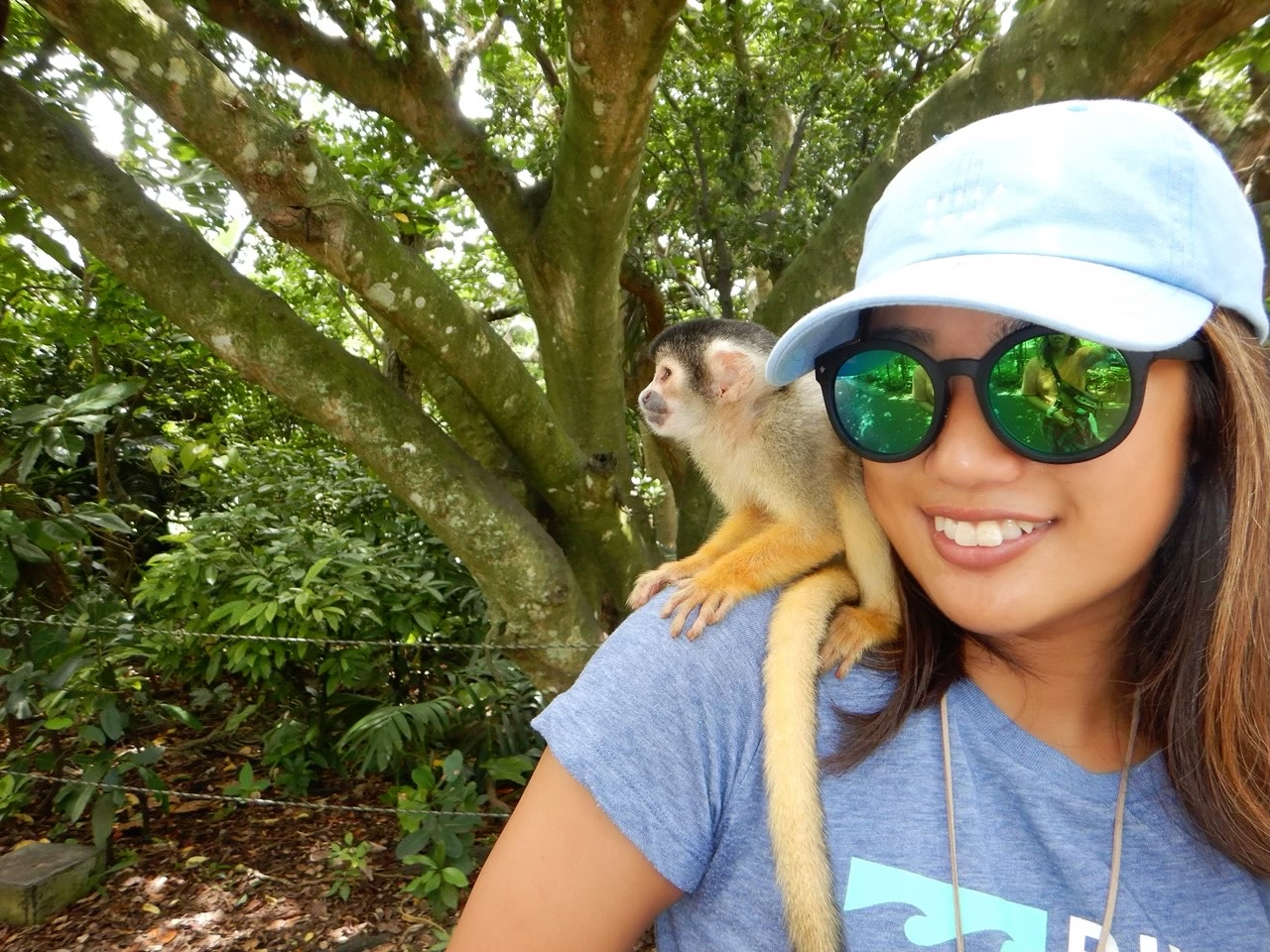 肩乗り猿(笑)