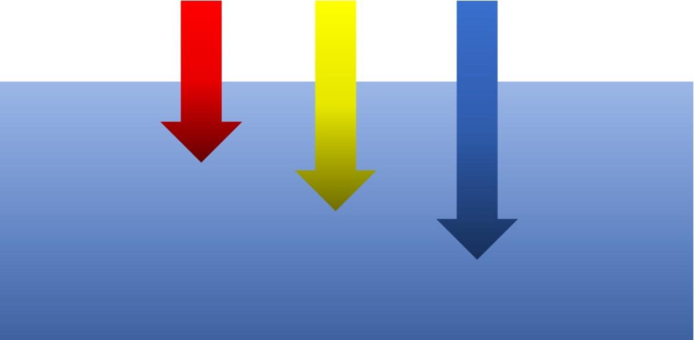 波長の長い光(赤)は水中で吸収されやすい