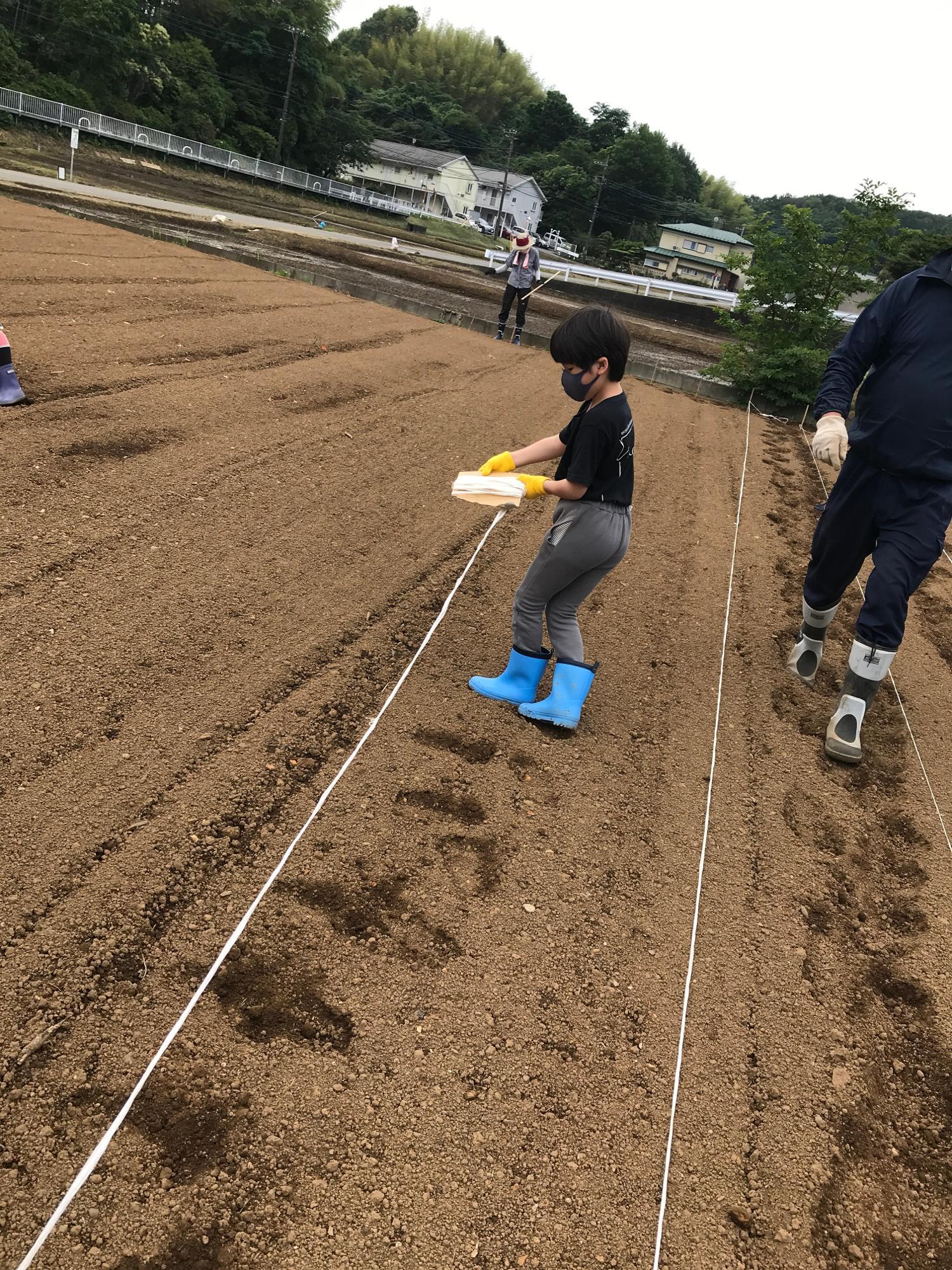 我が子もロープを張るのをお手伝い。種をまく土を踏まないように丁寧にロープを張っていきます。