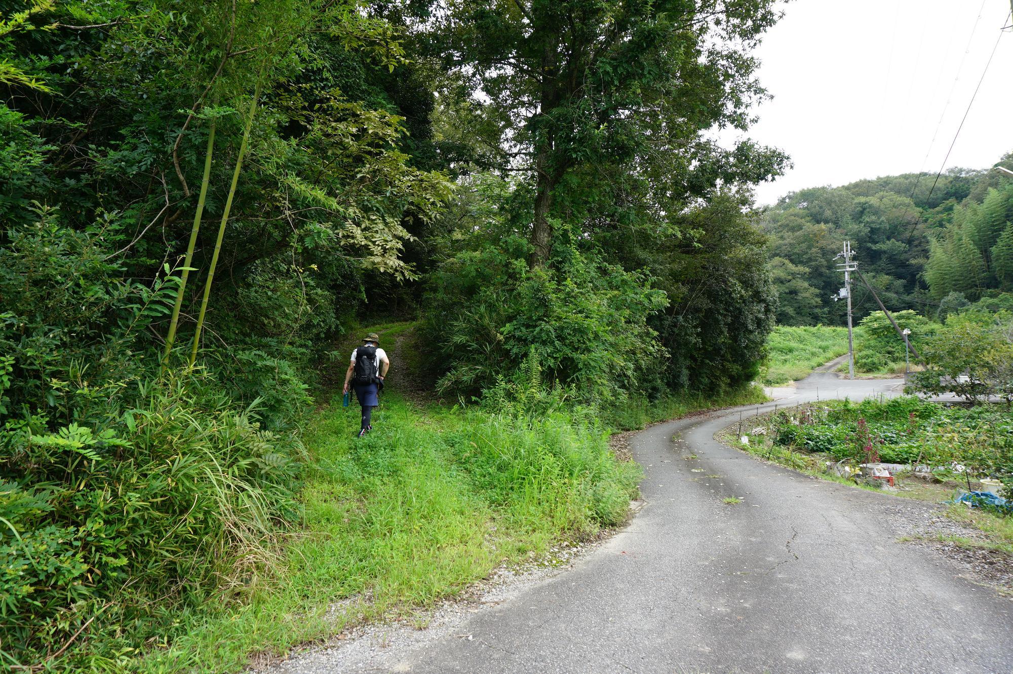 左が登山道入り口