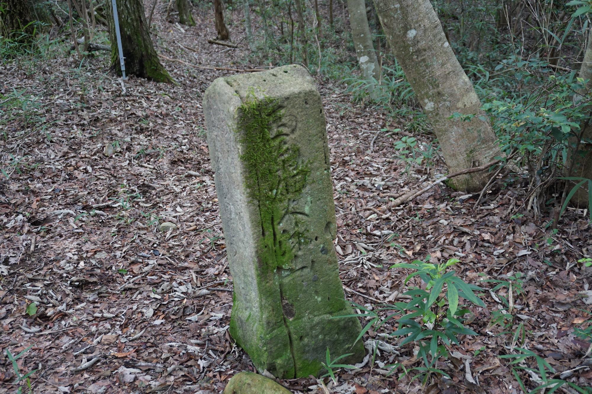 この道標石柱から山頂まではそう遠くないはずだが・・・