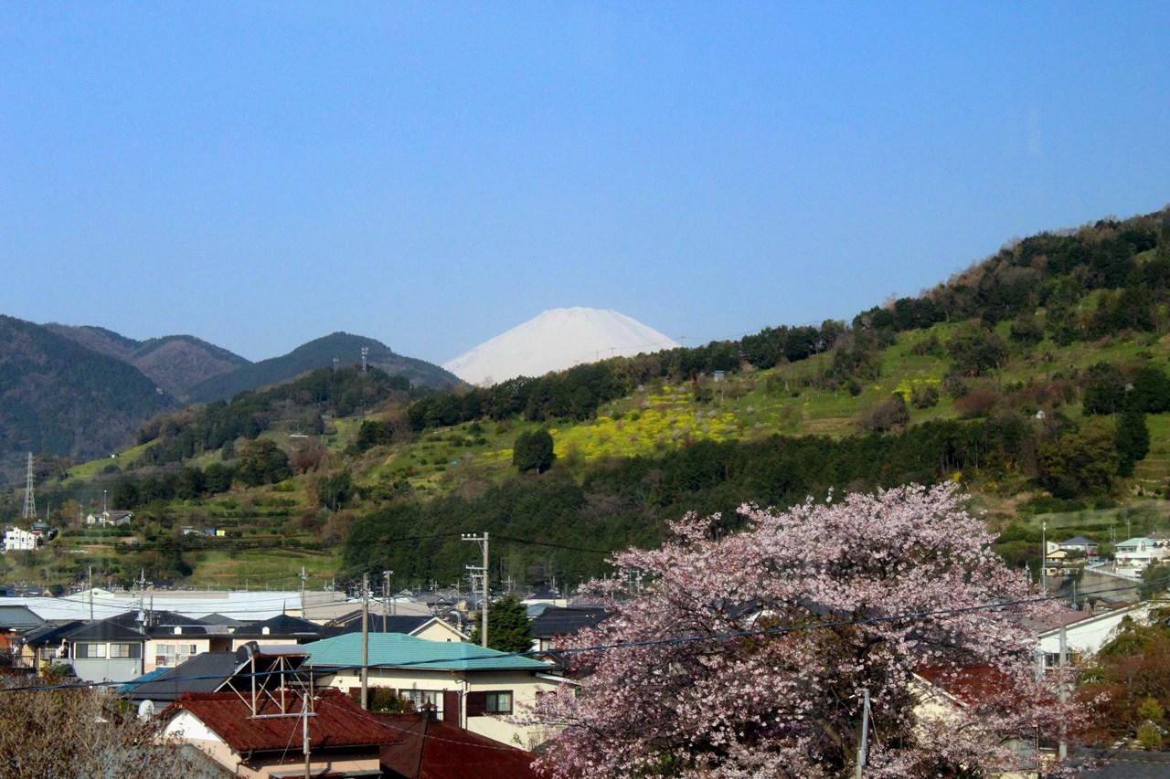 国府津から山北ぬ向かう車窓から見えた富士山。空気の澄んだ日にはくっきりと見える。