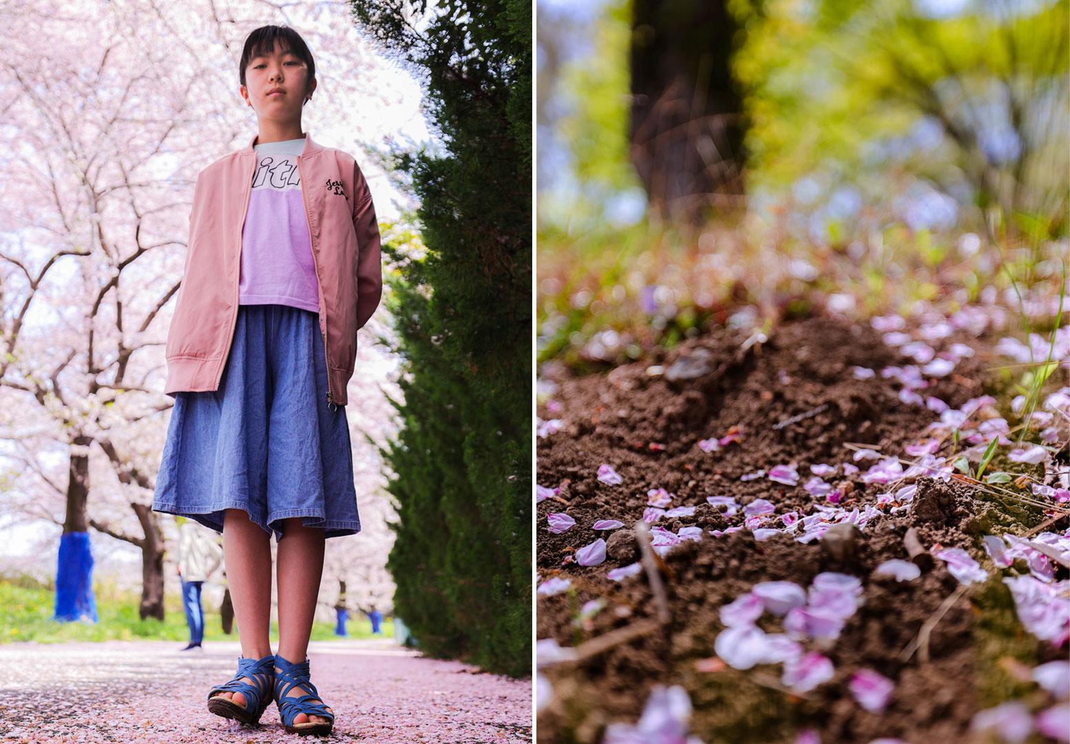 桜道散歩写真(両写真とも35mm)